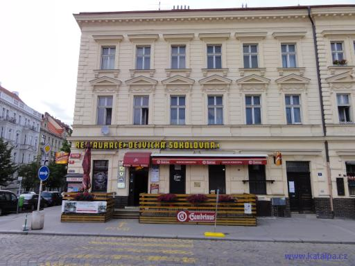 Restaurace Dejvická sokolovna - Praha