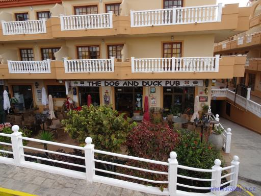 The dog and duck pub - Castillo Caleta de Fuste Fuerteventura